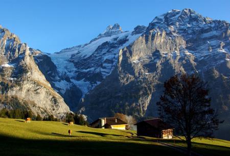 alpes suizosjpg