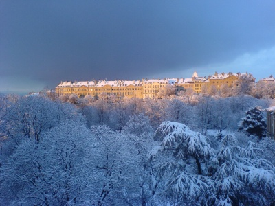 paisajes-nevados.jpg