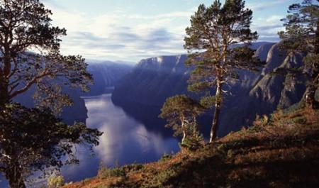 noruega-destino-ecologico.jpg