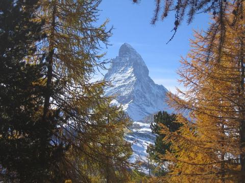 alpes-en-suiza.jpg