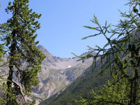 paisajes-suizos.JPG